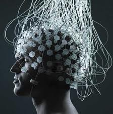 brain that runs the world www.0ntour.wordpress.com